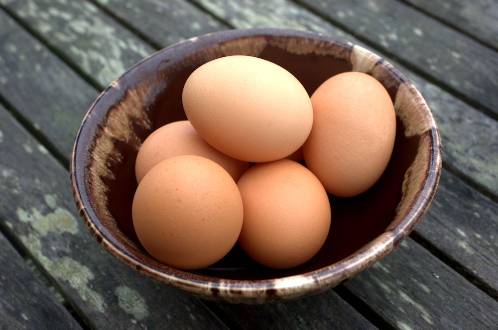 Cage free eggs are like GMO freepopcorn