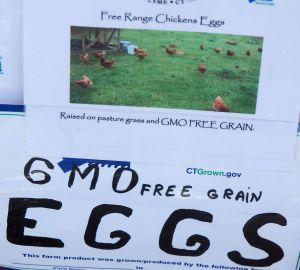 gmo free eggs