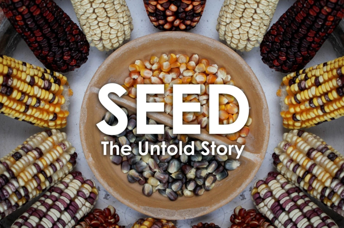 Seed Diversity is not a serious concern. Ignore the Seedmovie?