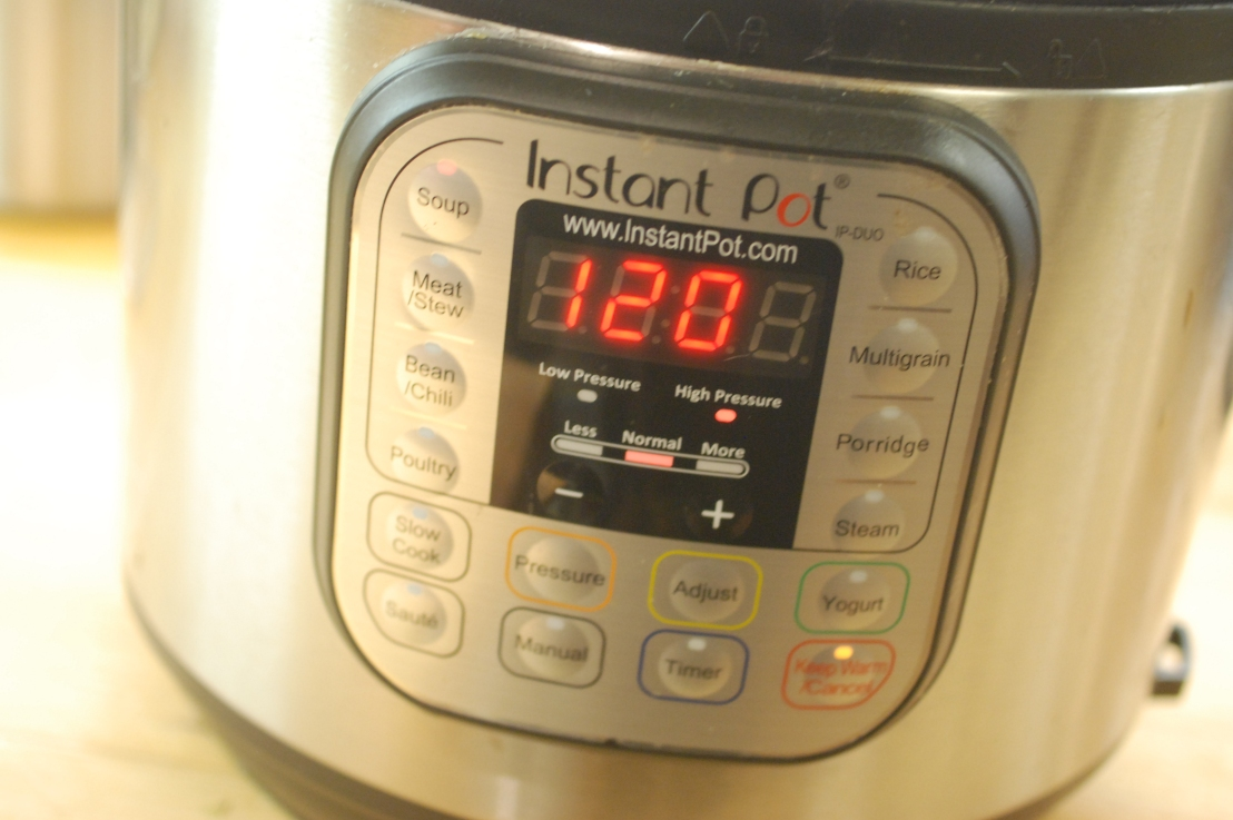 Should you buy an Instant Pot forChristmas?